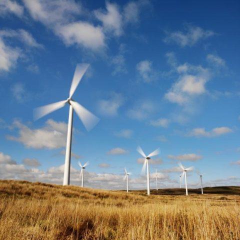 BK Groep beperkt de uitstoot van CO2