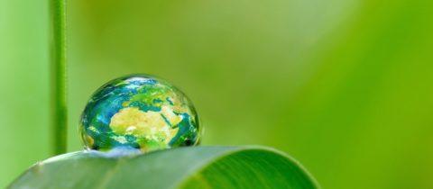 BK ingenieurs, CO2-Prestatieladder, trede 3, doelstellingen, transparant